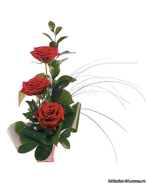 Букет из трех роз, оформлен зеленью (листья: берграса, салала, аспедистры)
